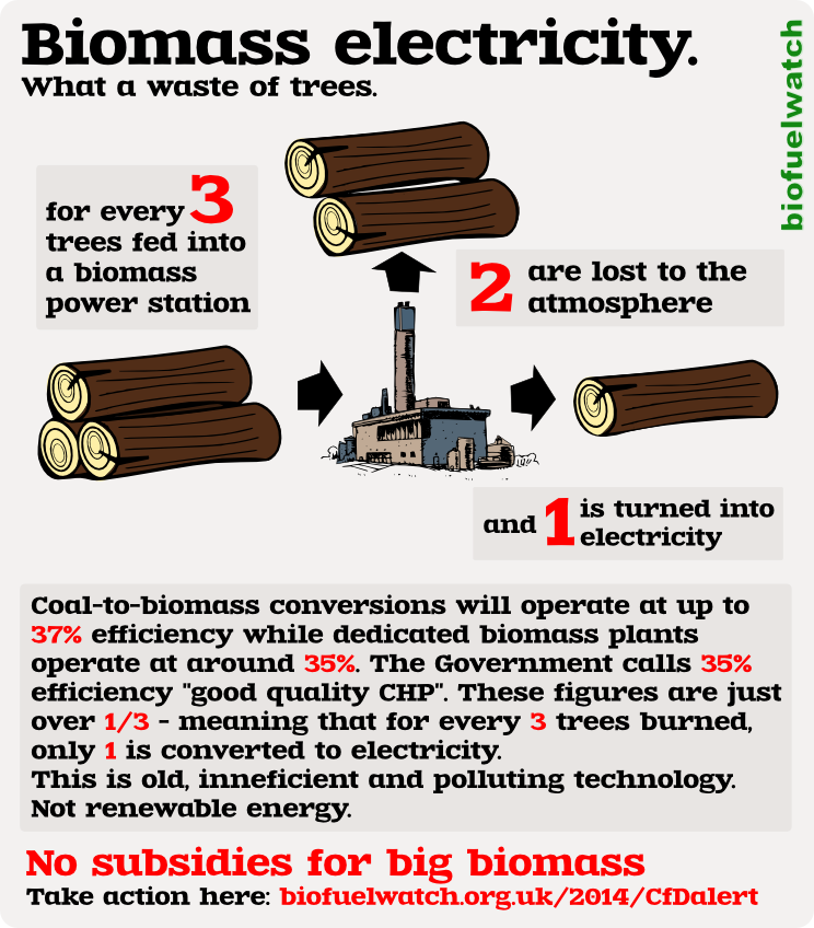 Biomass Garbage Electricity Energy ~ Biofuelwatch biomass faq