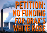 White Rose Petition