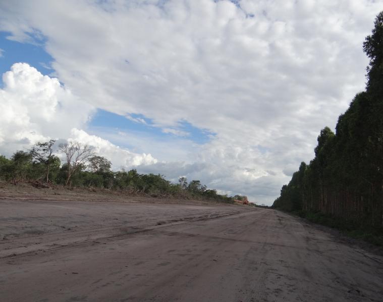 An airstrip inside Suzano's plantation, municipality of Urbano Santos