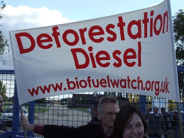 deforestation diesel