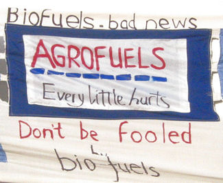 agrofuels-every-little-1