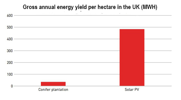 biofuelwatch | Biomass and land use