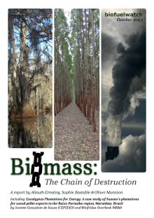 Biomass: The Chain of Destruction